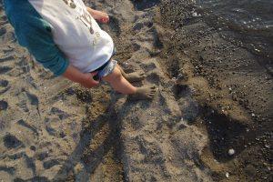 お台場 海浜公園 ビーチ (7)