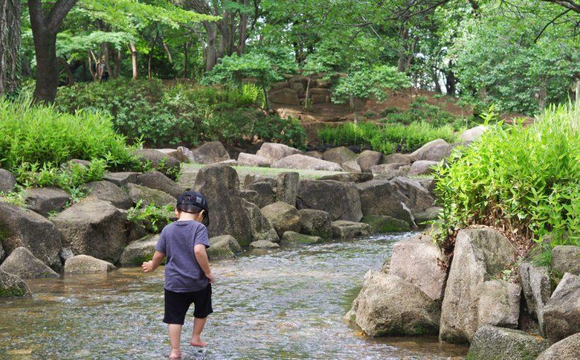 杉並区 井草森公園 水遊び