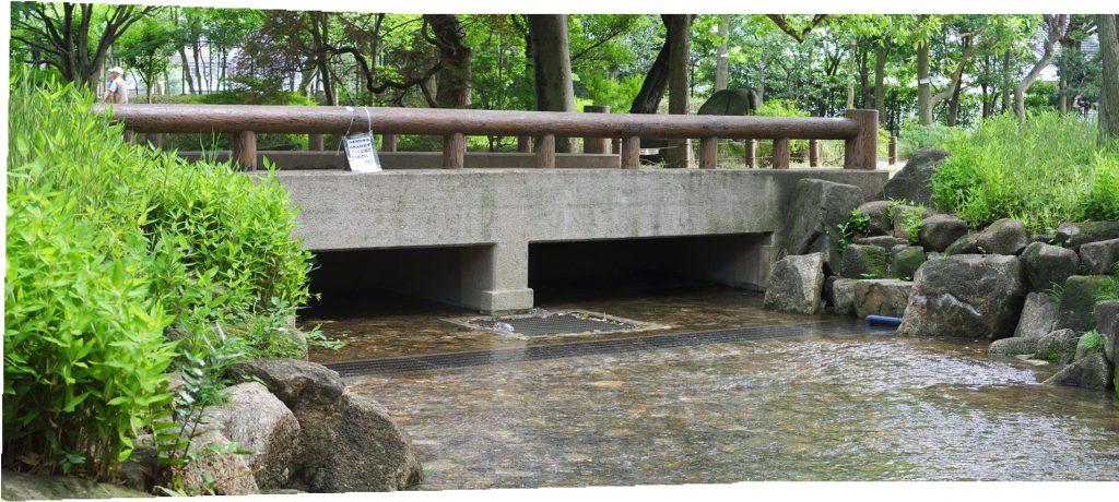 井草森公園-水遊び場-パノラマ02