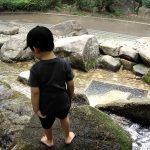杉並区 井草森公園 滝