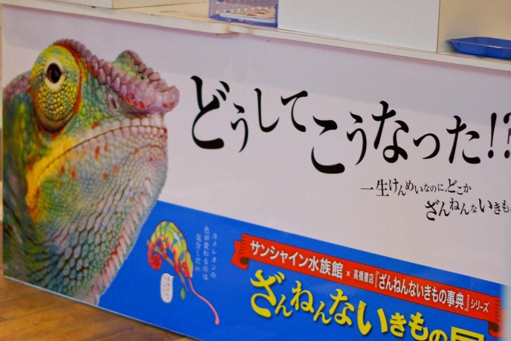 サンシャイン水族館 ざんねんないきもの展 (2)
