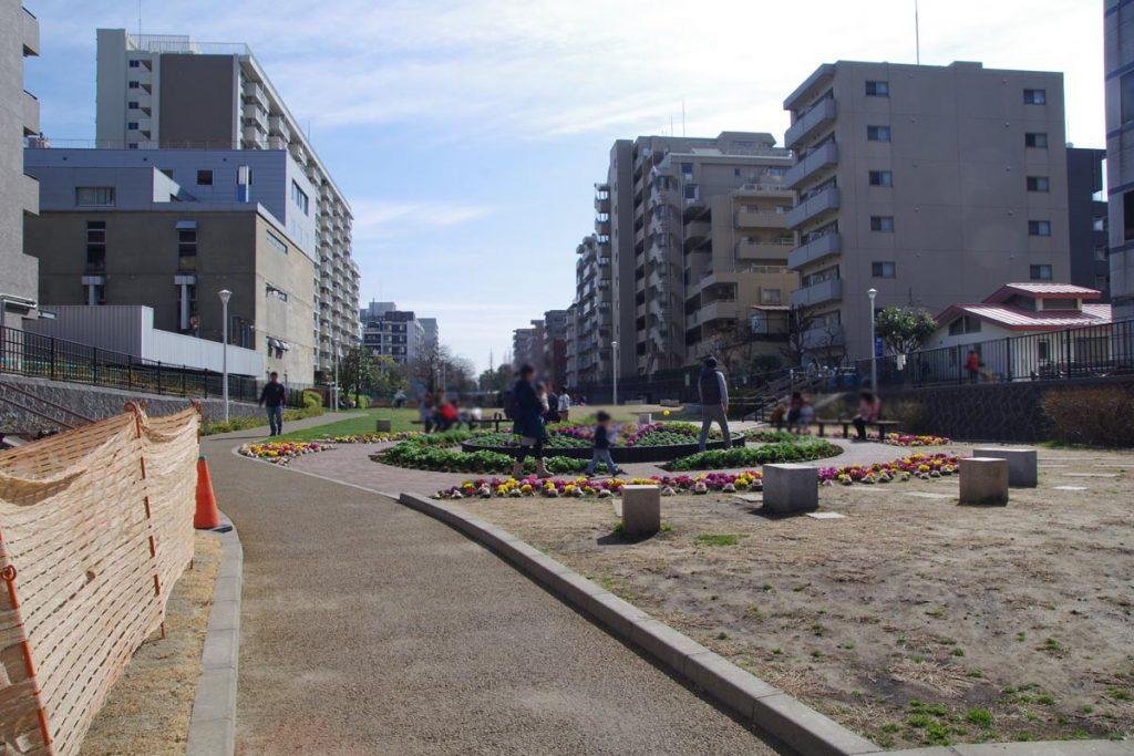 大横川親水公園 花壇