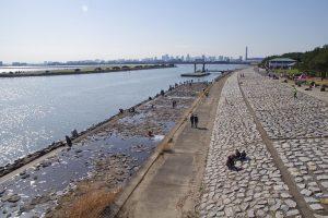 葛西臨海公園 橋
