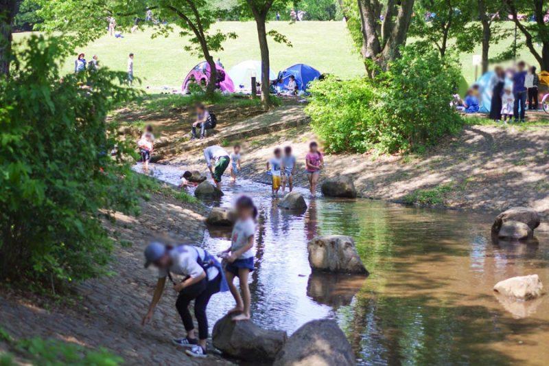 所沢 航空公園 じゃぶじゃぶ池 むさしの川