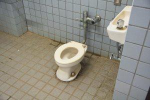 自然情報館 トイレ