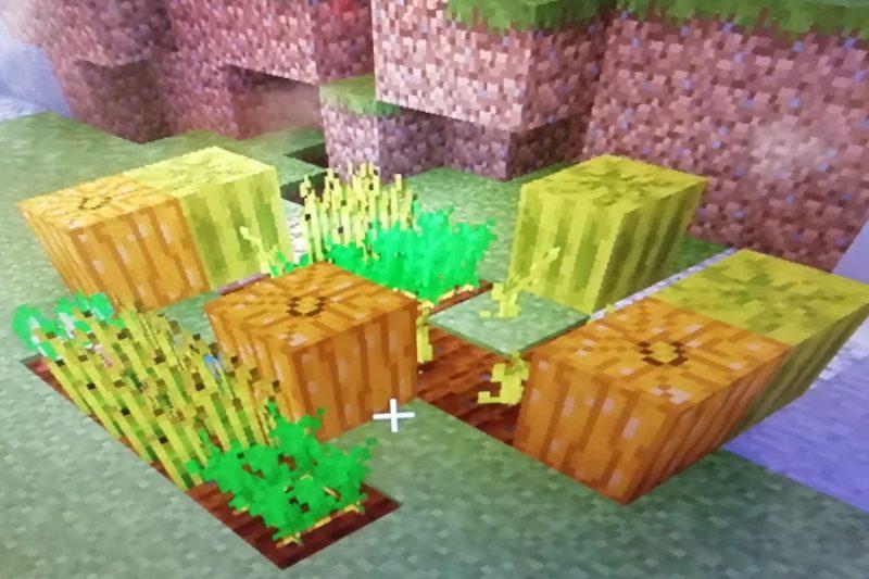 マイクラ 植物