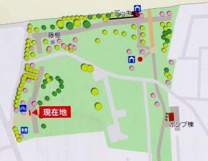 東伏見公園-マップ